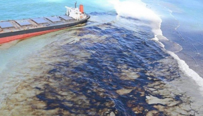kiu-international-desk-second-japanese-team-in-mauritius-to-clean-mangroves-damaged-by-oil-spill