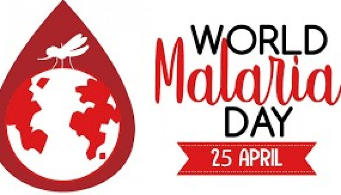 ministry-of-health-holds-virtual-discussion-on-malaria-control-to-celebrate-world-malaria-day